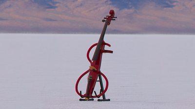 Image: Modern sculptural cello
