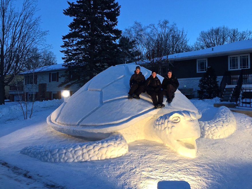 Image: Sea turtle snow sculpture