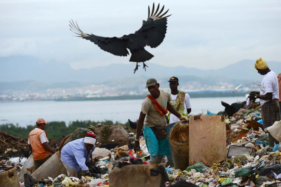 Image: dump collectors and crows