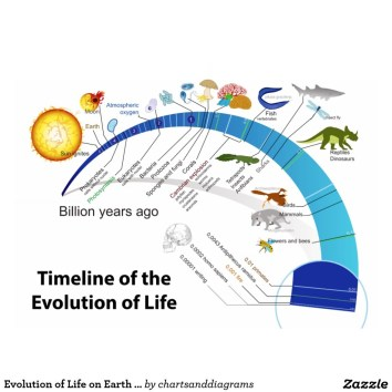 Image: diagram of life
