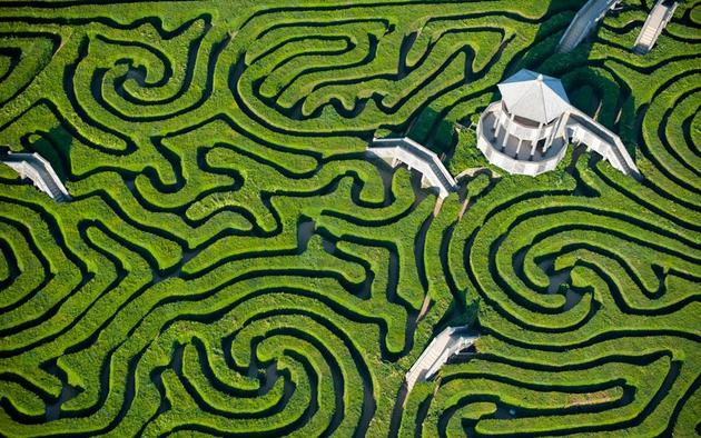 Image: Aerial Photo of the geometry of a bizarre garden maze