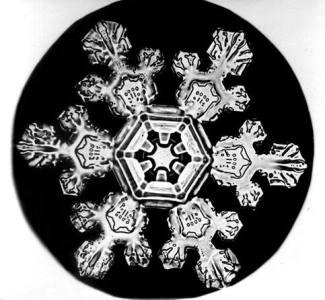 Snowflake Bentley Snowflake 3