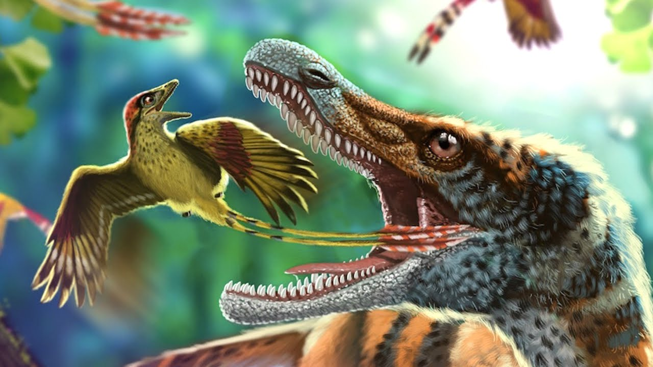 Feathered Dinosaur and Ancient Bird: Dinosaur Feather Coloration