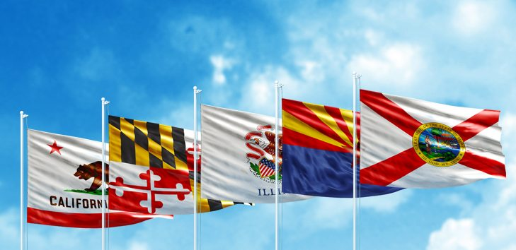 Image: State flags blowing in the breeze: flags helping us understand the design of anything