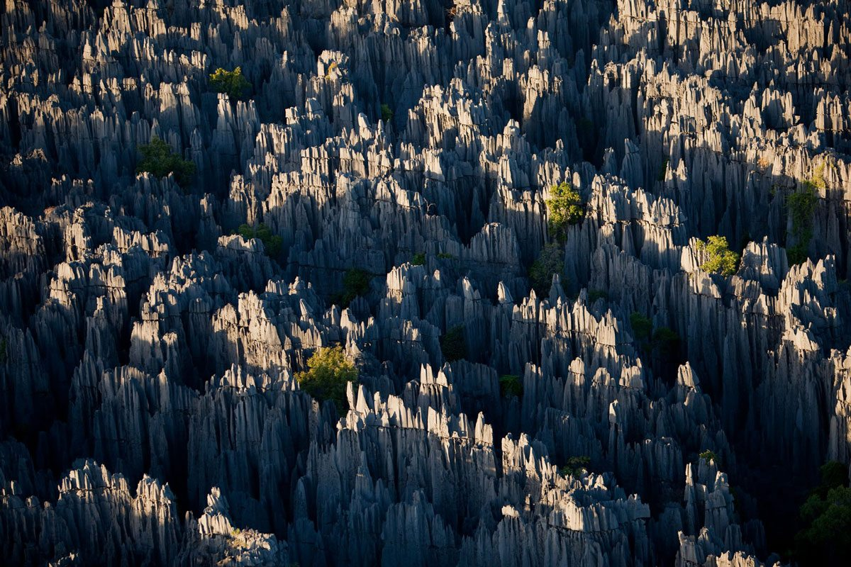 stone-forest-yunnan-2