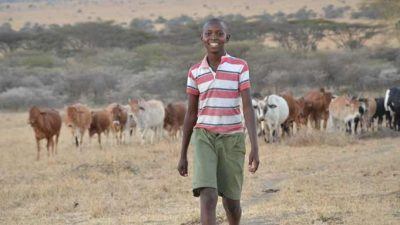 Image: Richard Turere and his cattle