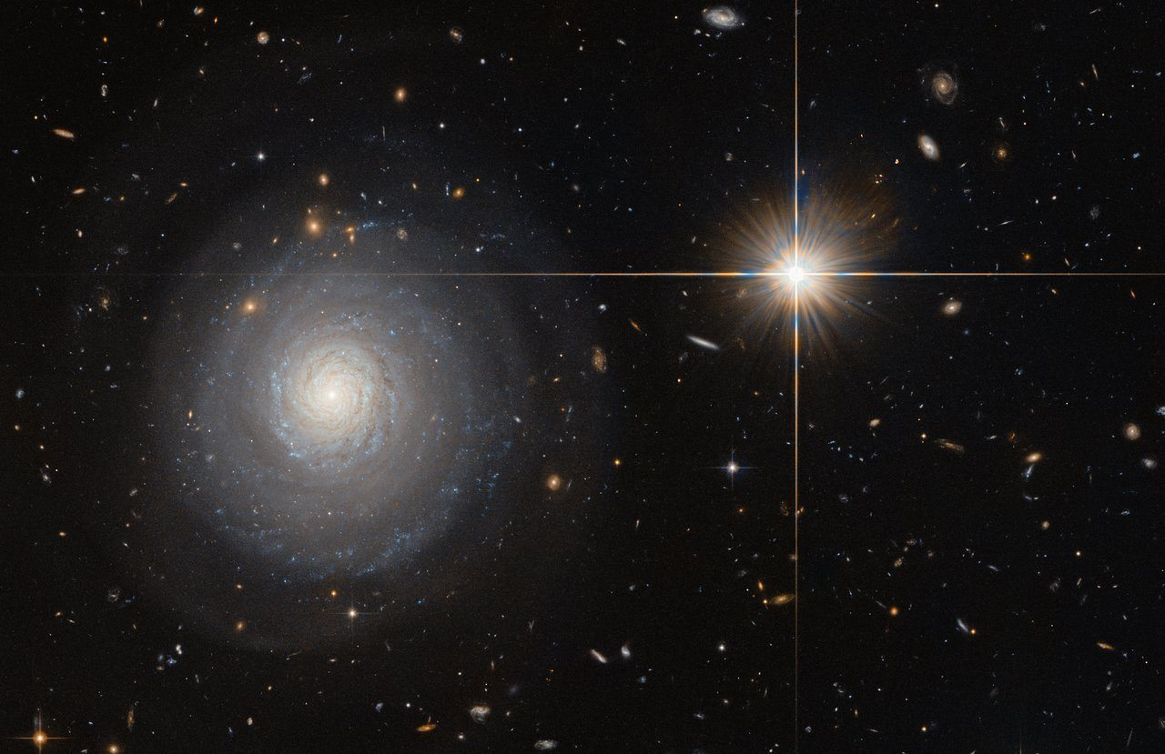 Image: A galaxy filled corner of Hubble's field of view