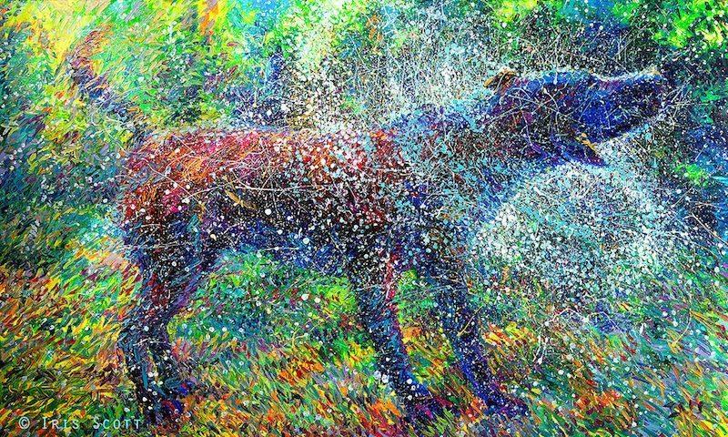Image: Canis Major by the finger painter Iris Scott
