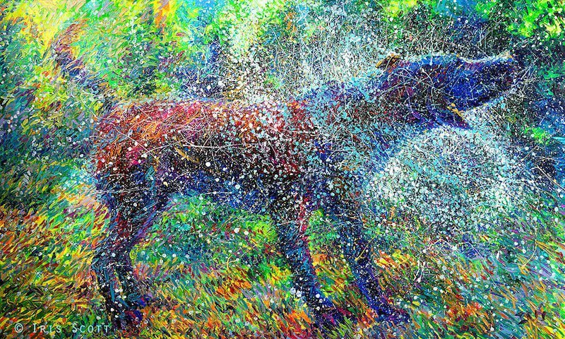 Image: Canis Major by the finger painter Iris Scott