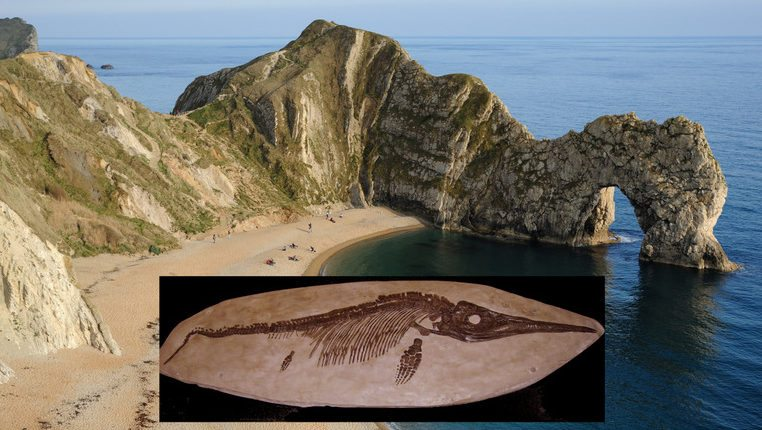 Image: the beach at Lyme Regis, England, Jurassic Coast with an Ichthyosaur skeleton