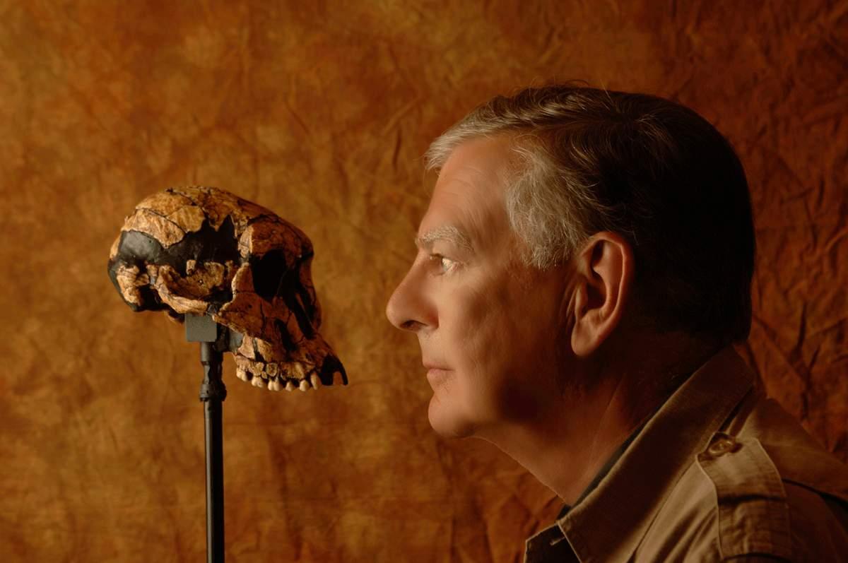 Image: Scientist staring at an early human skull, seemingly pondering human history