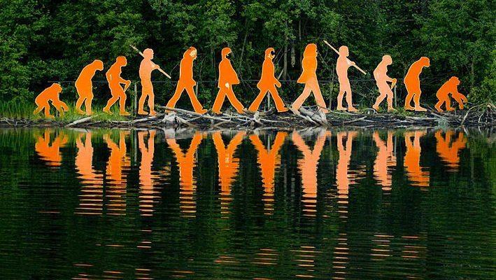 Image: Sculptures of evolution of man against a forest background