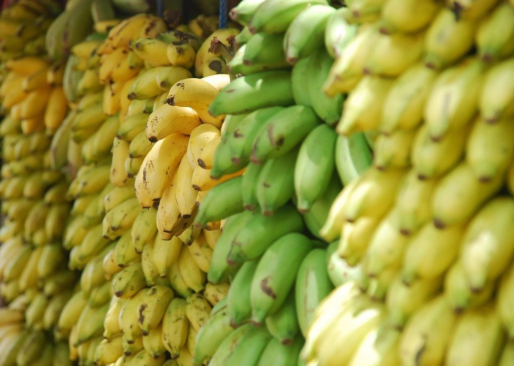 Image: ripe bananas