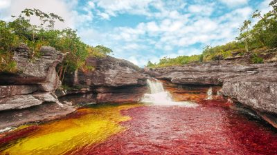 Image: Cano Cristales -- the rainbow river