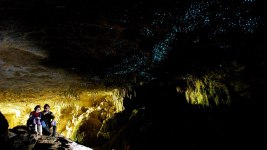 Image:People sitting inside of cave next to colony of glow worms