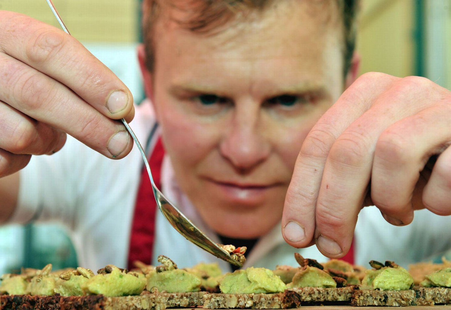 Image: Chef carefully puts the final touches on a bug inspired dish