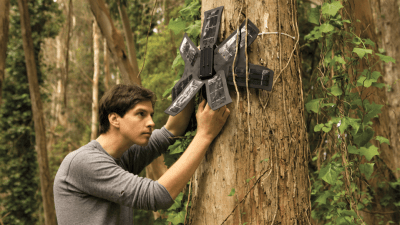Image: Rain forest Connection founder places a device in a tree that uses an old cellphone to detect illegal logging