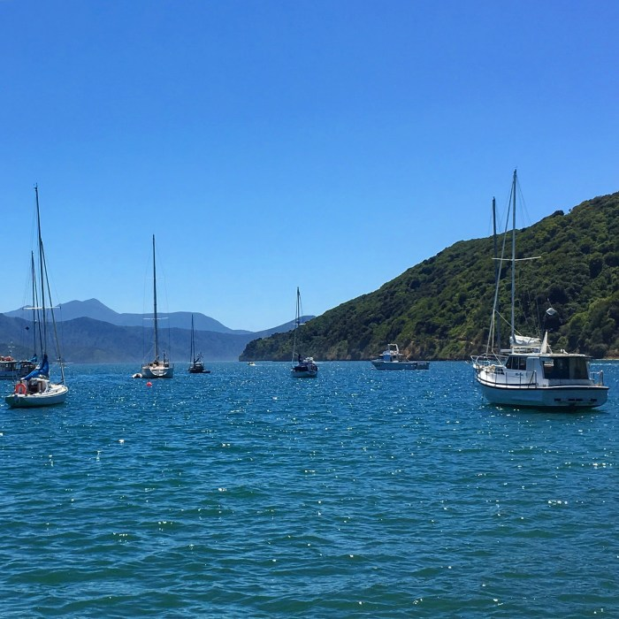 picton harbour 700x700 - Nelson to Wellington, New Zealand by bus and ferry via Picton