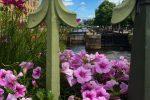 gothenburg canals flowers - A day in Gothenburg exploring Slottsskogen & the city center