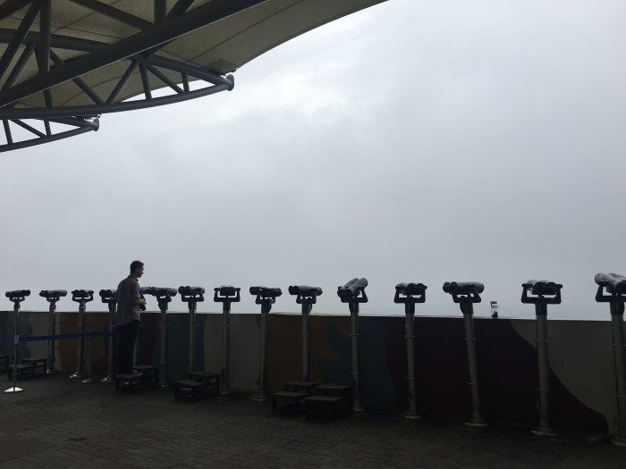 dmz tour from seoul dora observatory 700x525 - A visit to the DMZ - Touring the border between South Korea & North Korea