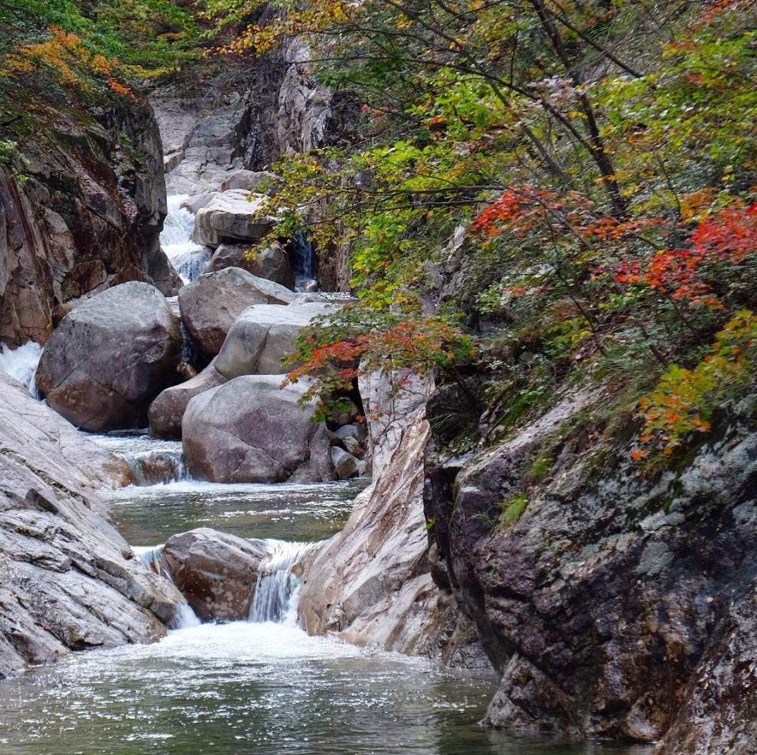 seoraksan national park hiking autumn leaves river - Hiking in Seoraksan National Park - Biseondae