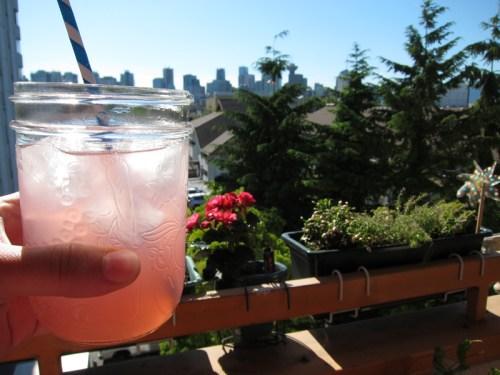 rhubarb fizz limeade