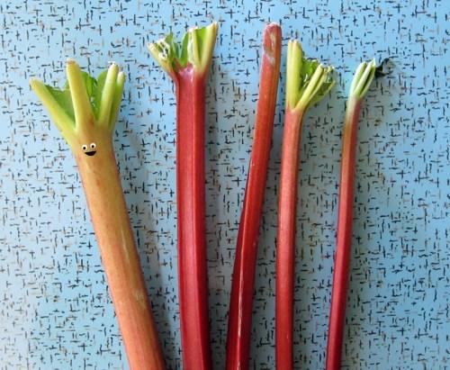 rhubarb eyes