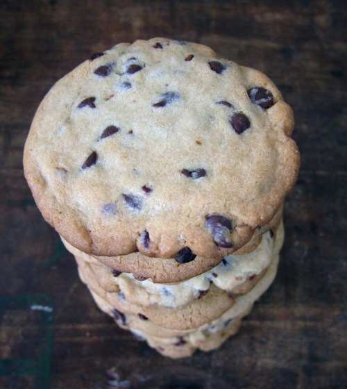 crispy mint chocolate chip cookies | everybody likes sandwiches