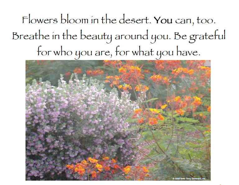 Gratitude and Grace help us bloom in the desert. (c) Beth Terry, CSP