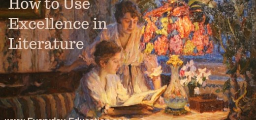 How to Use Excellence in Literature curriculum.