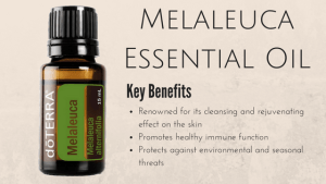 Melaleuca Essential Oil Review By DoTerra