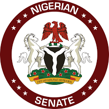 """Police IG makes cosmetic appearance in Senate to face """"Misau charges"""""""