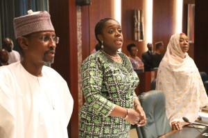 36 Finance Commissioners protest allocation; Adeosun summons FAAC meeting for Wednesday
