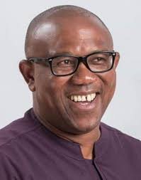 Running mate debacle: American-based APGA chieftain disagrees on Obi, others