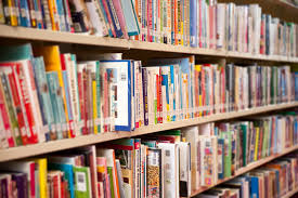 NGO plans libraries in 1299 Anambra schools