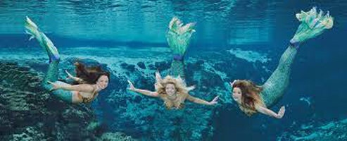 Mermaids, 5 Things To Do At Week Wachee Springs, Florida