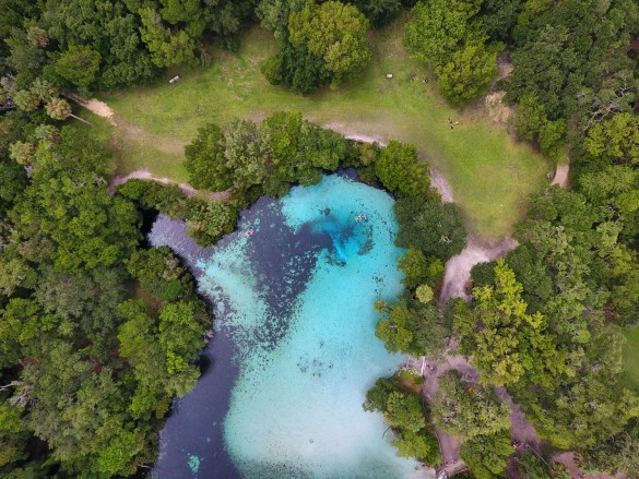 Aerial & Drone Photography Exploring the Ocala National Forest: Silver Glen Springs, USA Photography