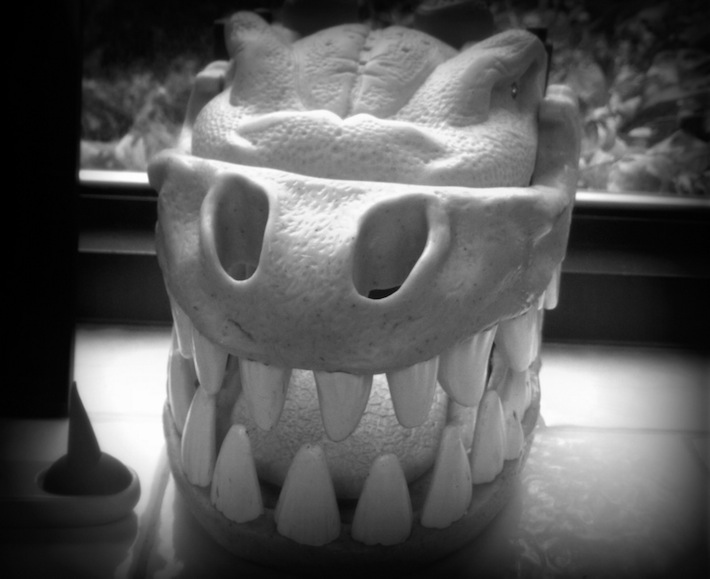 dino-dentures; dental office decor