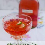 A bottle of Strawberry Gin and a glass of Strawberry Gin and Tonic