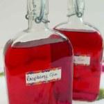 Two bottles of Raspberry Gin