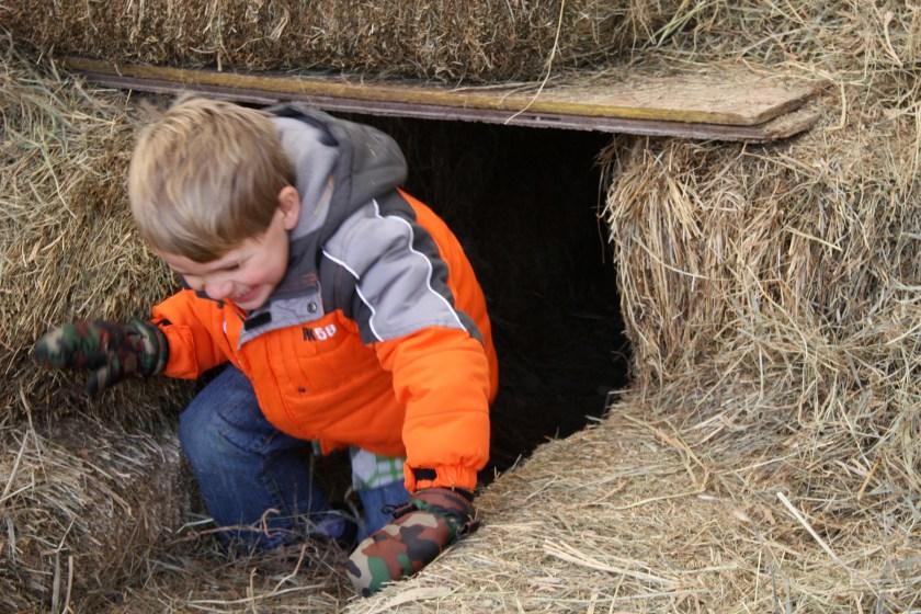 img_0337-hay-tunnel