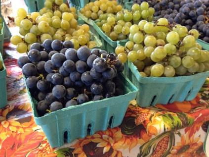 Plump, luscious grapes ...