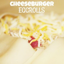 Cheeseburger Eggrolls is a Thing
