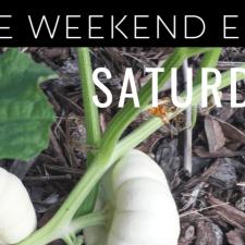 the weekend edit September