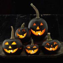 Holloween Pumpkin 3
