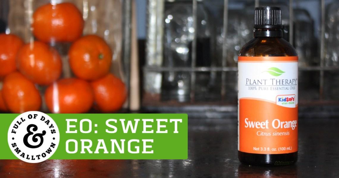 Essential Oil Basics: Wild (Sweet) Orange