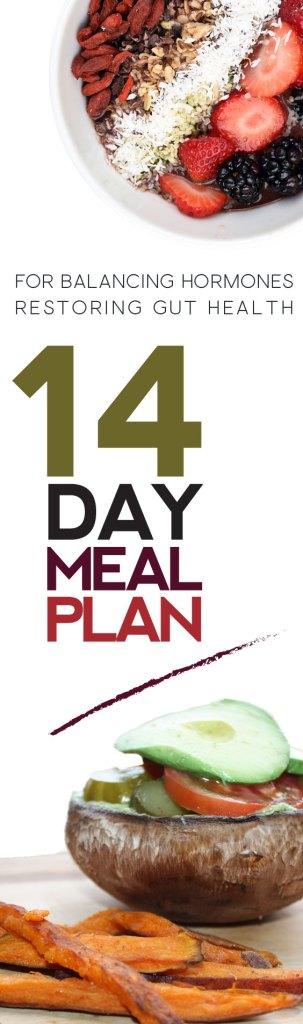 14 day meal plan pinterest pin