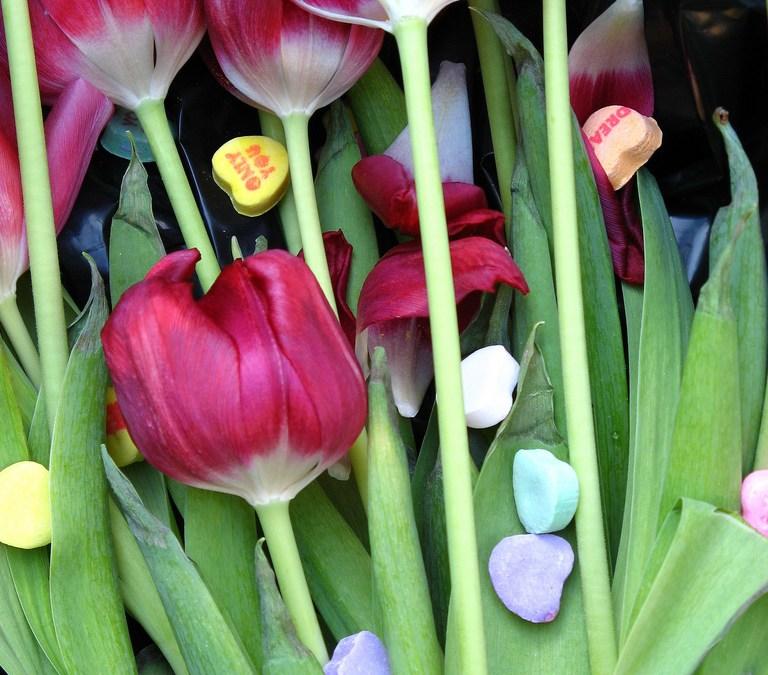 Living Bouquets