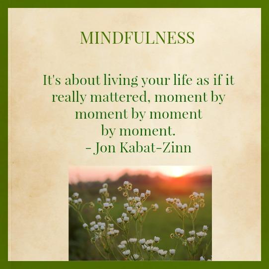 Mindfulness For Intentional Living Workshop