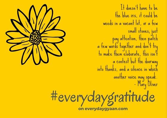 Everyday Gratitude  #everydaygratitude